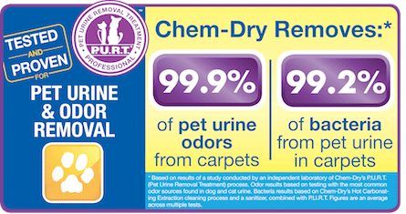 Pet Urine & Odor Removal Removes 99.9% of Pet Urine Odors and 99.2% of Bacteria